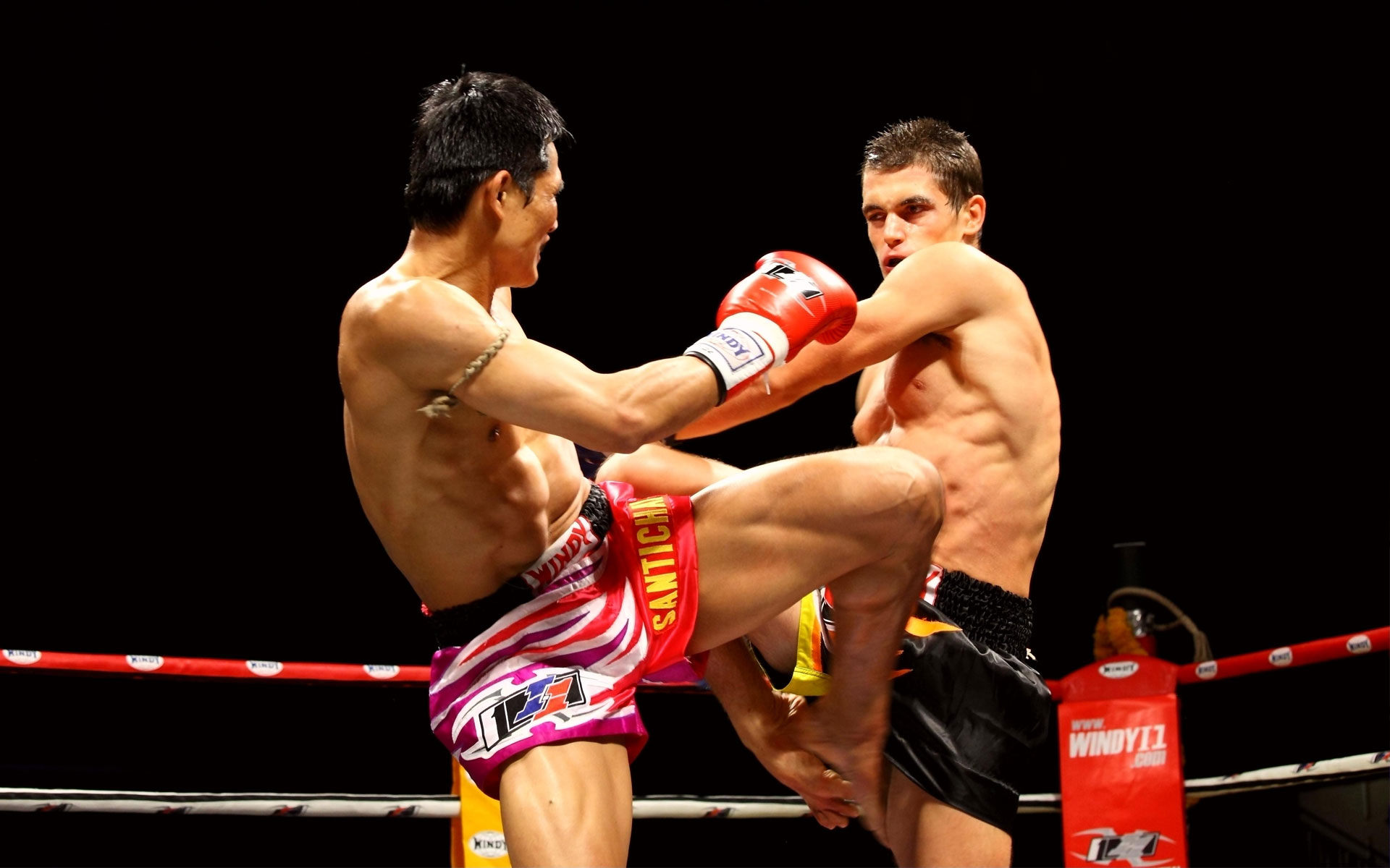 Hong Kong Muay Thai