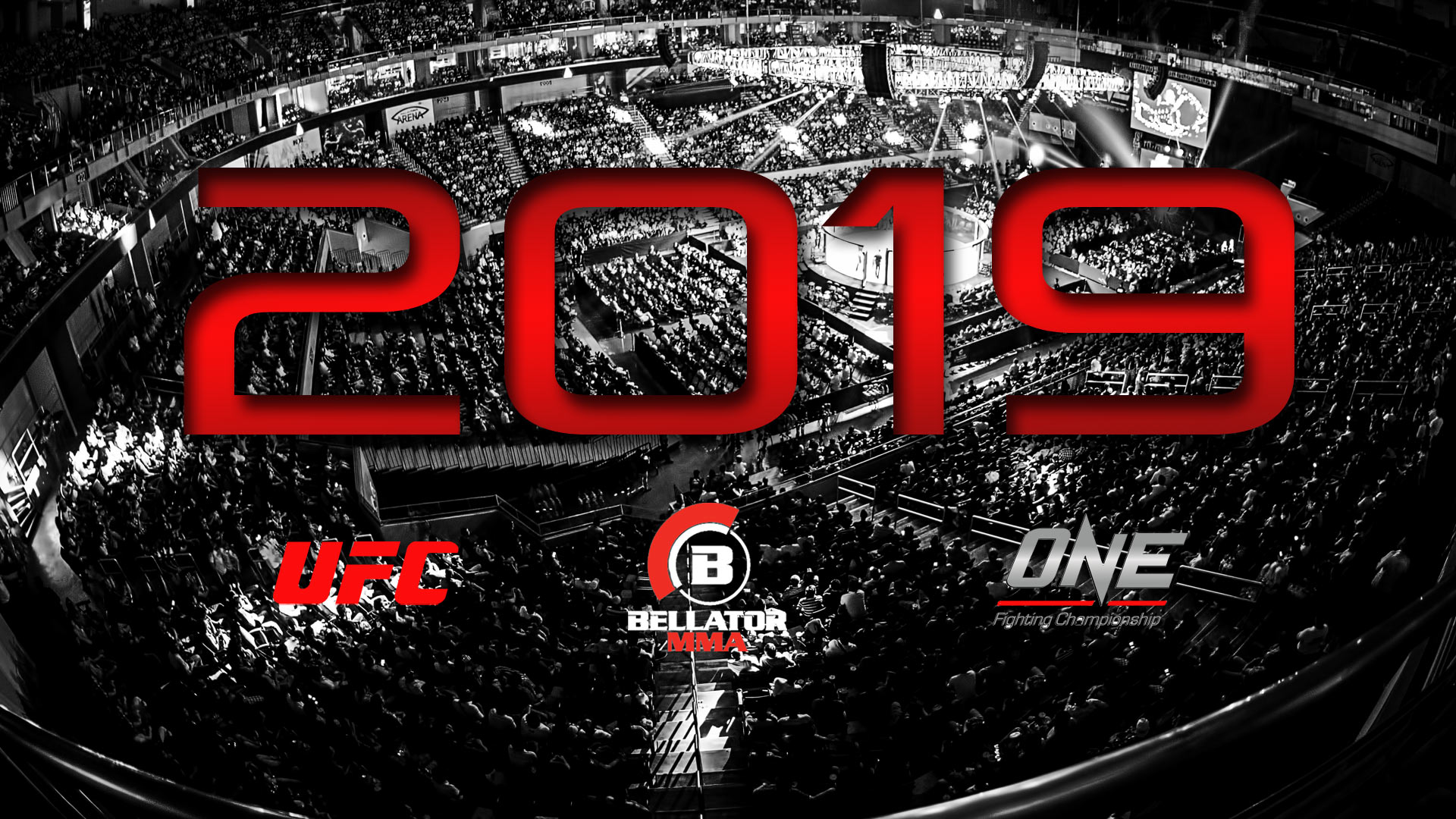 MMA FIGHTS TO WATCH IN 2019
